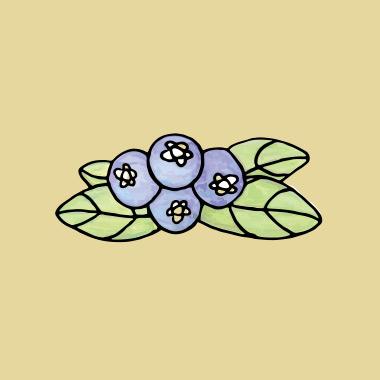 Winslow Farm logo
